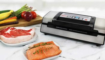 11 Best Vacuum Sealers for Sous Vide 2021