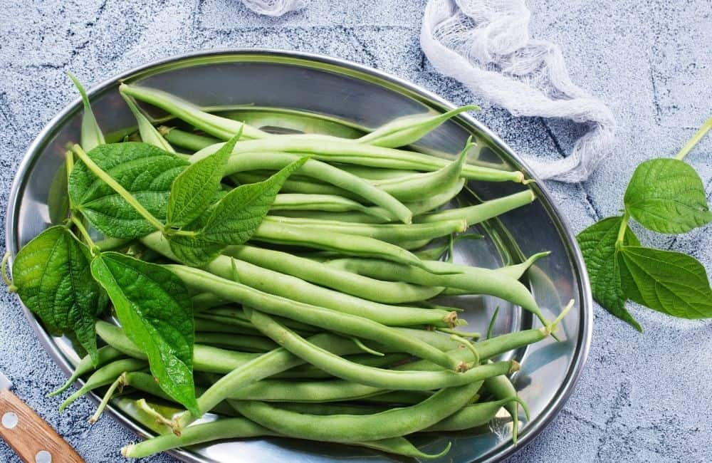 Can You Vacuum Seal Green Beans?